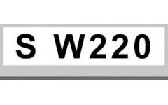 S W220 (3)