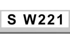S W221 (9)