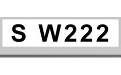 S W222 (4)