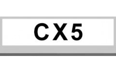 CX5 (10)