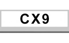 CX9 (7)