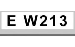 E W213 (2)