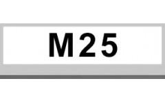 M25 (1)