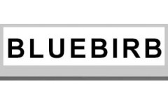 BLUEBIRB (1)