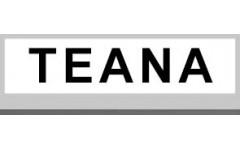 TEANA (5)