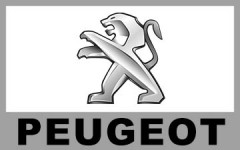 PEUGEOT 寶獅 (35)