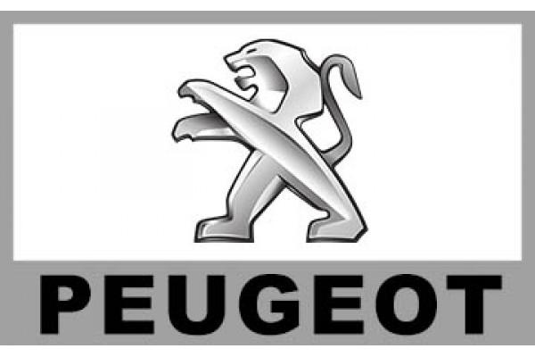 *Peugeot寶獅*汽車喇叭尺寸一覽表