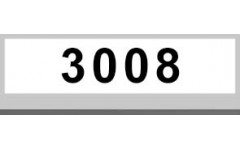 3008 (3)