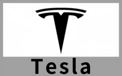 Tesla 特斯拉 (1)
