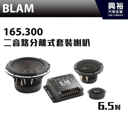 【BLAM】LIVE 165.300 三音路分離式套裝喇叭